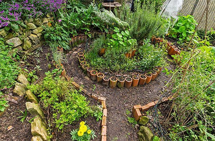 Introduction to Permaculture Webinar and Discussion image