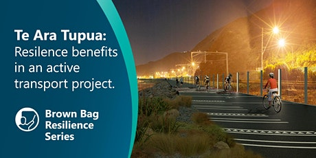 Te Ara Tupua – resilience benefits in an active transport project tickets