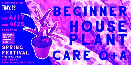 BBFL SPRING FESTIVAL - PLANT CARE WORKSHOP tickets