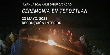 Ceremonia en Tepoztlán con Ayahuasca/Kambó/Bufo/Cacao boletos