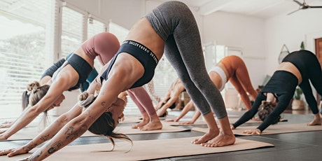 Beginners Yoga 101 - Workshop + One Month Experience tickets