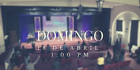 Servicio Domingo 18 de Abril tickets