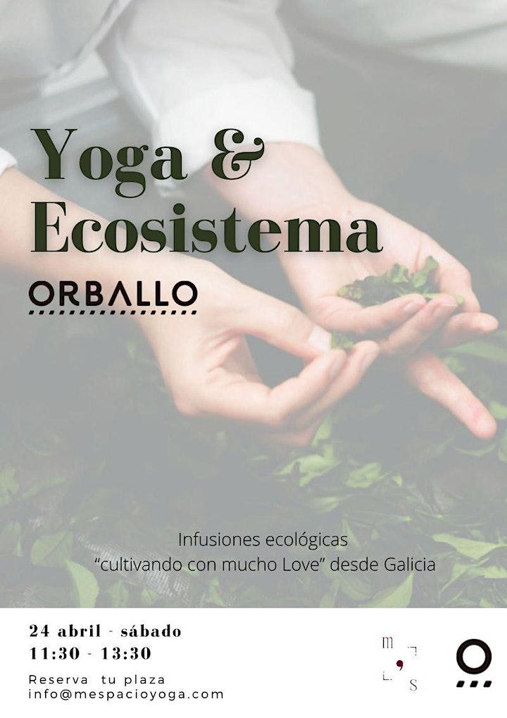 Imagen de Yoga + Infusiones -   Ecosistema Orballo