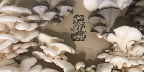 Mushroom Farm Tour & Conversation with an Urban Farmer tickets