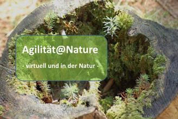 #EinfachAgil - Agilität online und aus der Natur lernen image