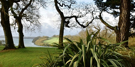 Timed car parking at Trelissick (19 Apr - 25 Apr) tickets