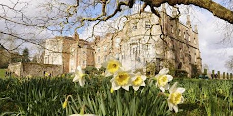 Timed entry to Mottisfont (19 Apr - 25 Apr) tickets