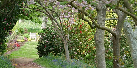 Timed entry to Mottistone Gardens and Estate (19 Apr - 25 Apr) tickets