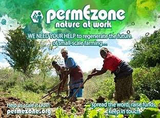 PermEzone in East Africa - An online talk tickets