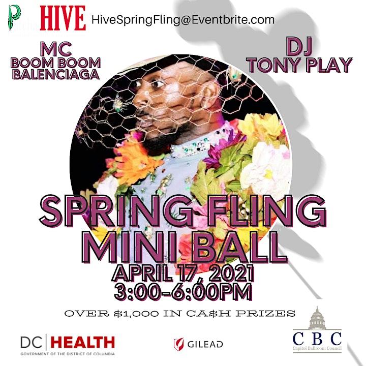 Spring Fling Mini Ball image