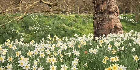 Timed entry to Anglesey Abbey, Gardens and Lode Mill (19  Apr -  25 Apr) tickets