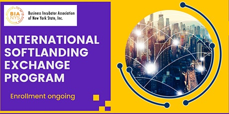 Webinar on Softlanding Exchange with Business Incubators of New York State tickets