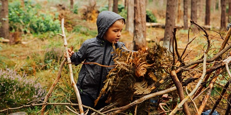 Wild Play 3 August - Amazing Trees at Ecclesall Woods (self-led) tickets