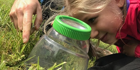 Wild Play 26 Aug - Exploring Woodland Creatures at Greno Woods (self-led) tickets