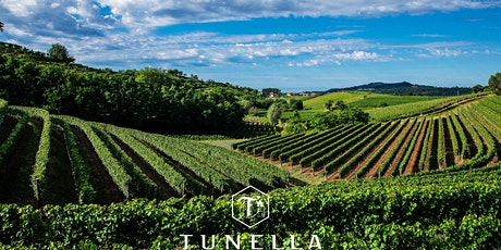 WINE TASTING: Friuli y Bodega LA TUNELLA entradas