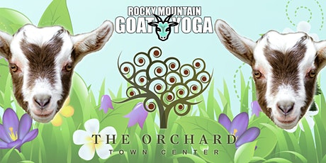 Goat Yoga - May 15th  (Orchard Town Center) tickets