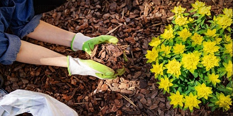 Florida Friendly Lunch and Learn: Benefits of Mulch tickets