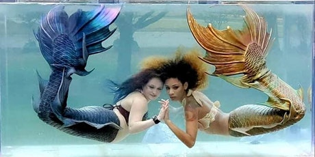 Mermaid Tank Rentals - Charlotte, NC tickets