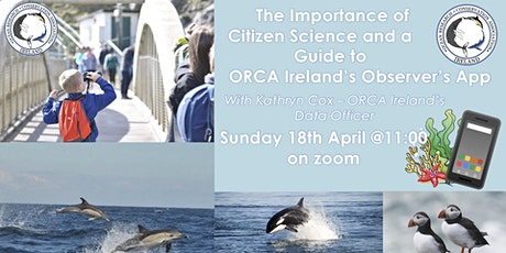 Importance of Citizen Science and a Guide to ORCA Ireland's Observer's App tickets