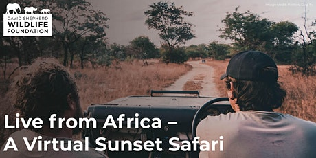 Live from Africa - A Virtual Sunset Safari tickets