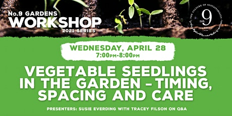 Vegetable Seedlings in the Garden: Timing, Spacing and Care (Virtual) tickets