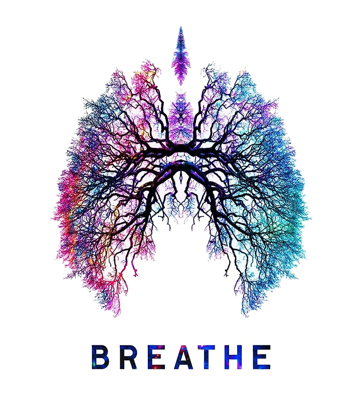 FREE: Embodied Breathwork - Introductory session image