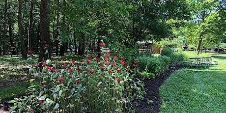 Volunteer opportunities in the Butterfly Garden at Wolf Trap National Park tickets