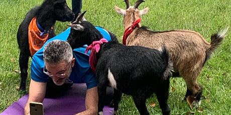 Father's Day Goat Yoga tickets
