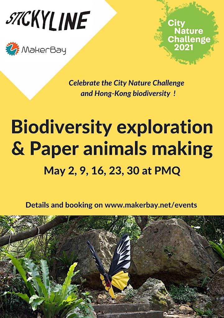 City Nature Challenge - Biodiversity exploration & Paper animals making image