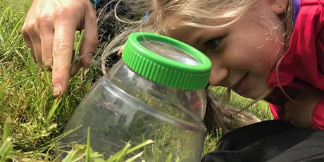 Wild Play 24 Aug - Woodland Creatures at Ecclesall Woods (self-led) tickets