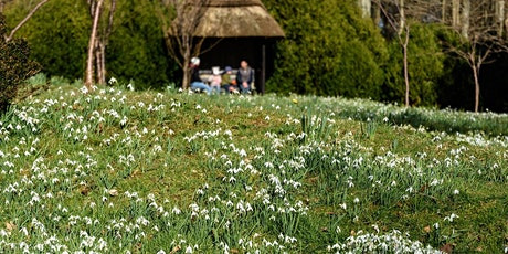 Timed entry to Kingston Lacy Garden and Parkland (19 Apr - 25 Apr) tickets