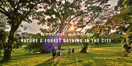 Nature and Forest Bathing in the City 【Wooded Meadow】 tickets