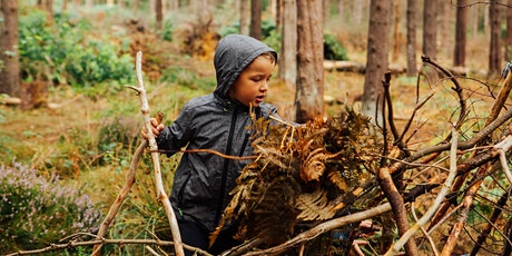 Wild Play 5 August - Amazing Trees at Greno Woods (self-led) tickets