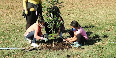 Tree Planting along Wyman Park Drive In Remington Neighborhood tickets