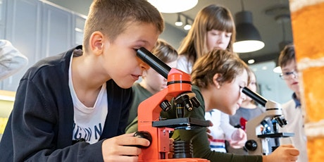 Atelier de biologie cu prof Grete Kincs / Vârstă participanți 7-12 ani tickets