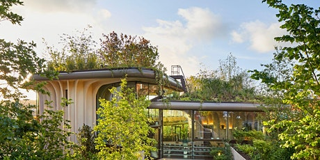 Biophilia for coaching clients who can't get out and walk tickets