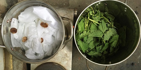 Workshop: Making Natural Dyes with Gal Leshem tickets