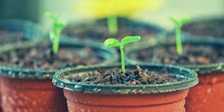 Online Church Planting Webinar tickets