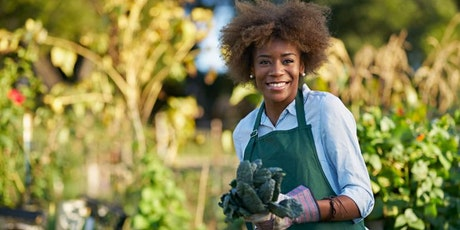 Garden Design and Maintenance Diploma tickets