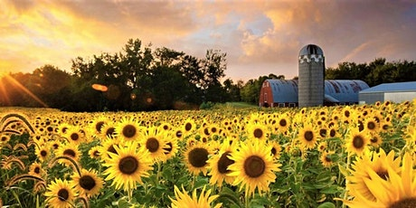 Wish Upon A Sunflower's Gala For Make-A-Wish tickets