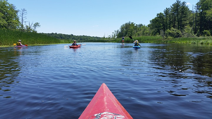 Guided Kayak Paddle of the Upper Reaches of the North River image