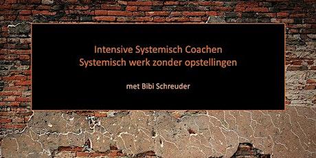 2-daagse Intensive 'Systemisch  Coachen' billets