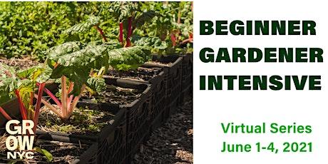 Beginner Gardener Intensive (Virtual Series) tickets