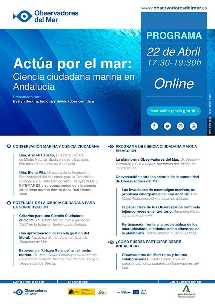 Imagen de Actúa por el mar, ciencia ciudadana marina en Andalucía