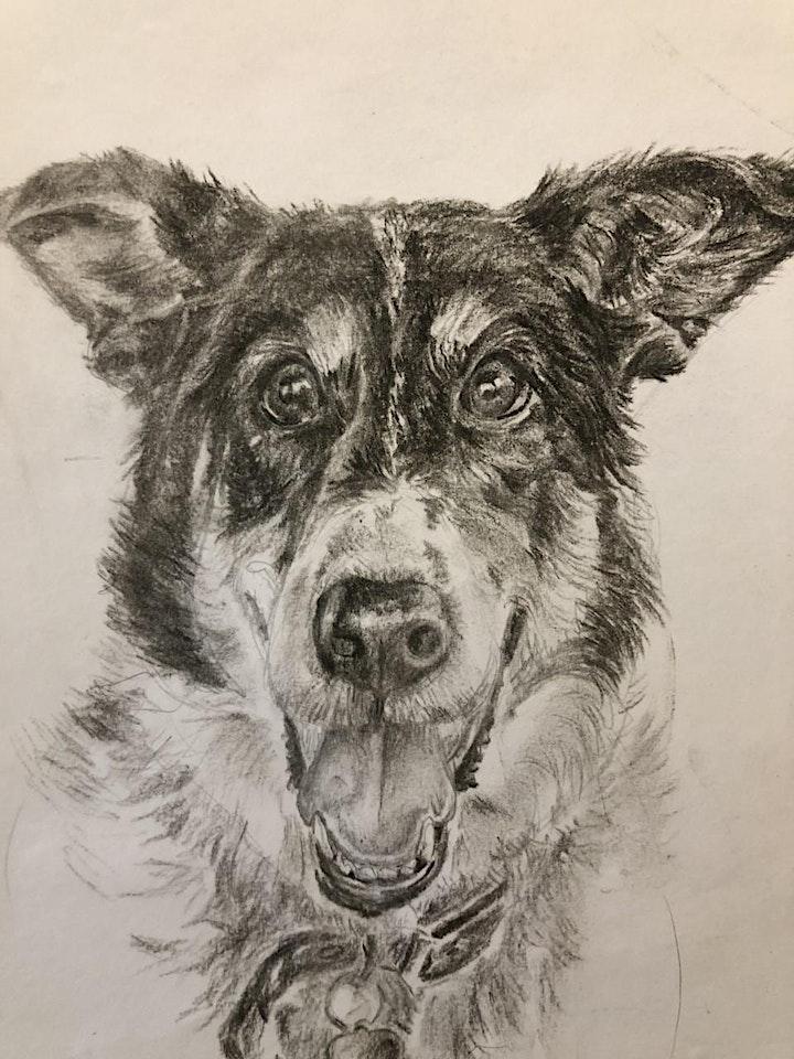 Sketch Your Pet image