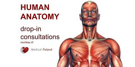 Human anatomy drop-in consultations for 1st year medical students - free tickets