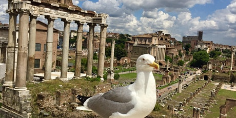 A Day in Rome with Olga Cuckovic tickets