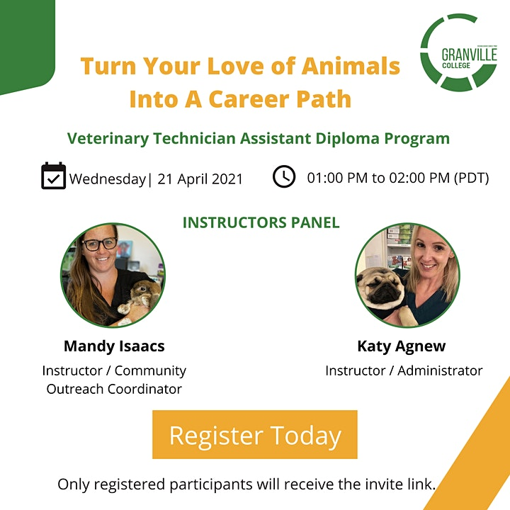 Turn Your Love of Animals Into A Career Path image