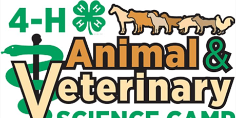 VIRTUAL: 4-H Exploring Veterinary Science Day Camp Fee tickets
