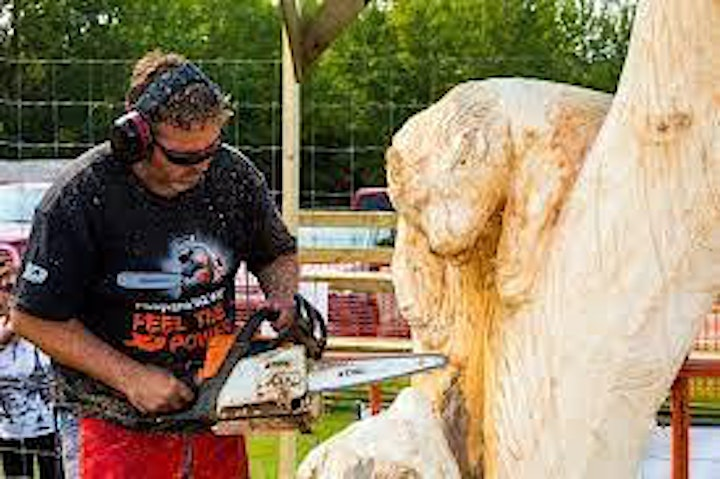 Manitou Beach Chainsaw Carving Festival image